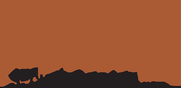 Prestige Security Doors | Your Prescott Security Door Source | Yavapai County AZ  sc 1 th 157 & Prestige Security Doors | Your Prescott Security Door Source ...